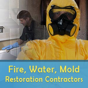 fire water mold